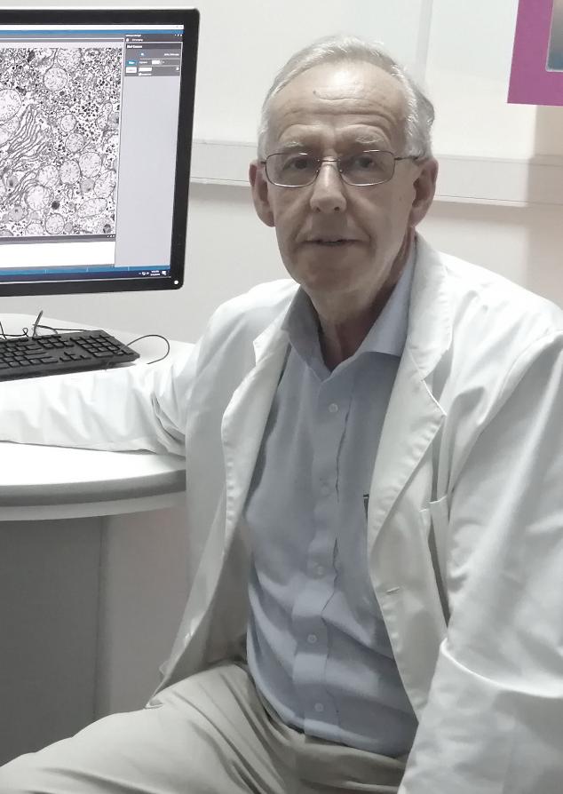 Homenaje al Profesor Eduardo Couve Montane