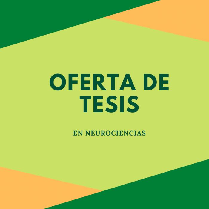 OFERTA DE TESIS EN NEUROCIENCIA